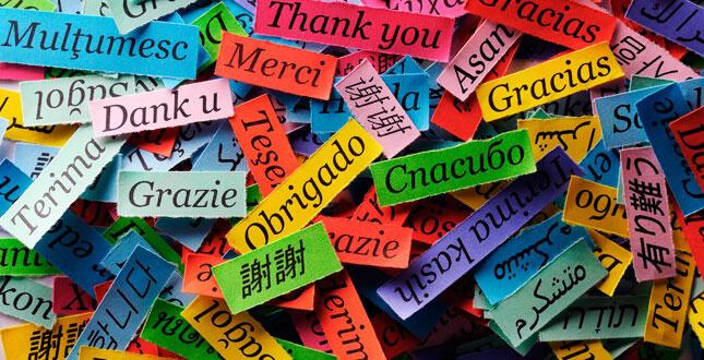 Idiomas Traduzidos